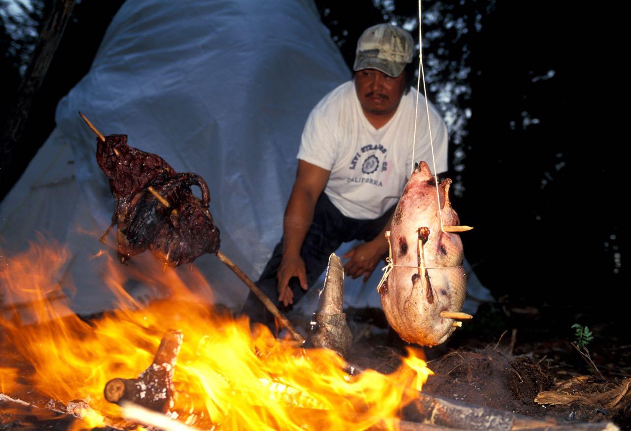 Wildgänse über dem Lagerfeuer.