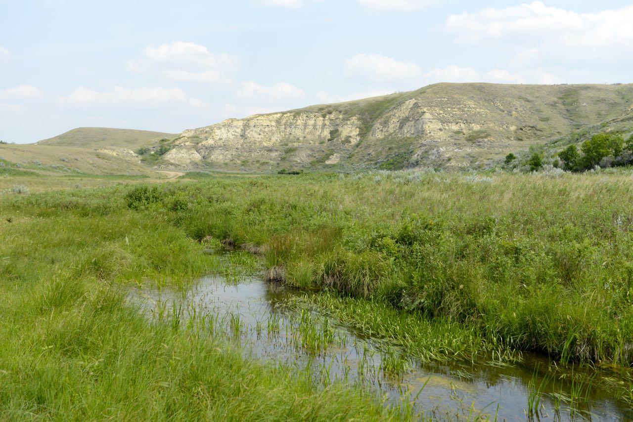 Im Tal von Big Muddy.