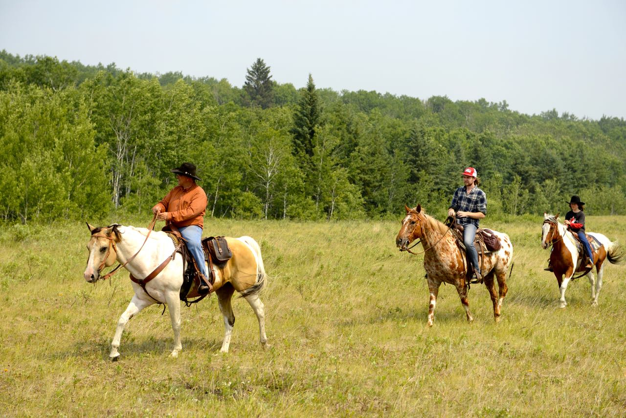 Ausritt im Prince Albert National Park.