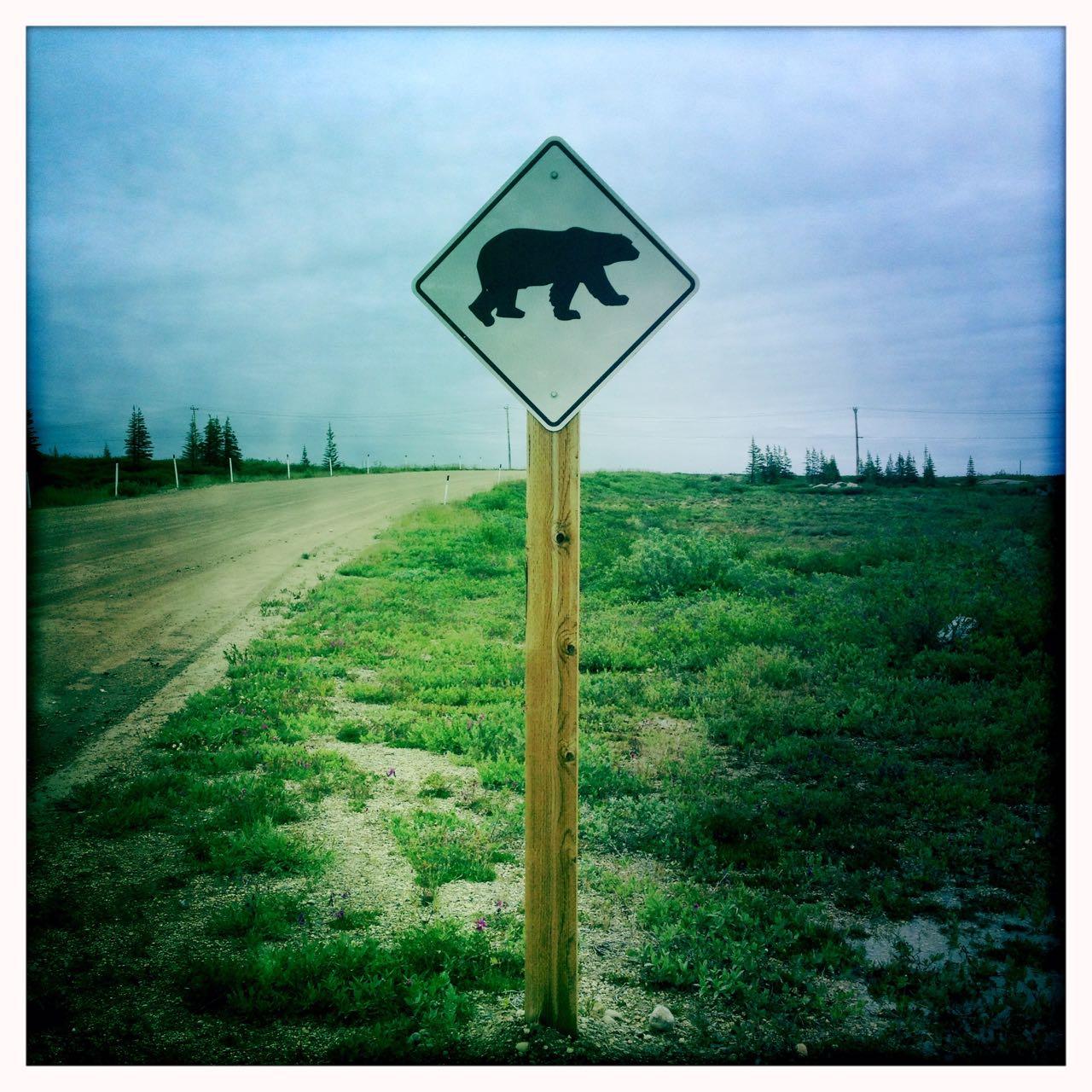 Warnung vor Bären.