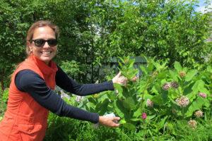 Toronto: Besuch bei einer Chefgärtnerin