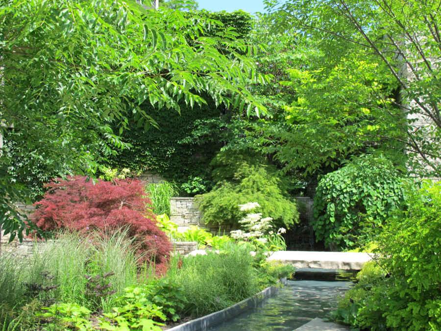 Toronto Botanical Garden 29